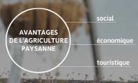 Défendre la culture, l'innovation et les savoir-faire paysans
