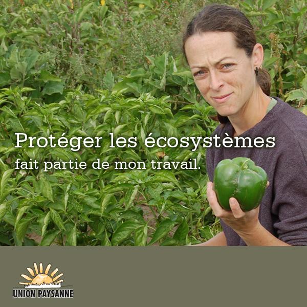 Protéger les écosystèmes