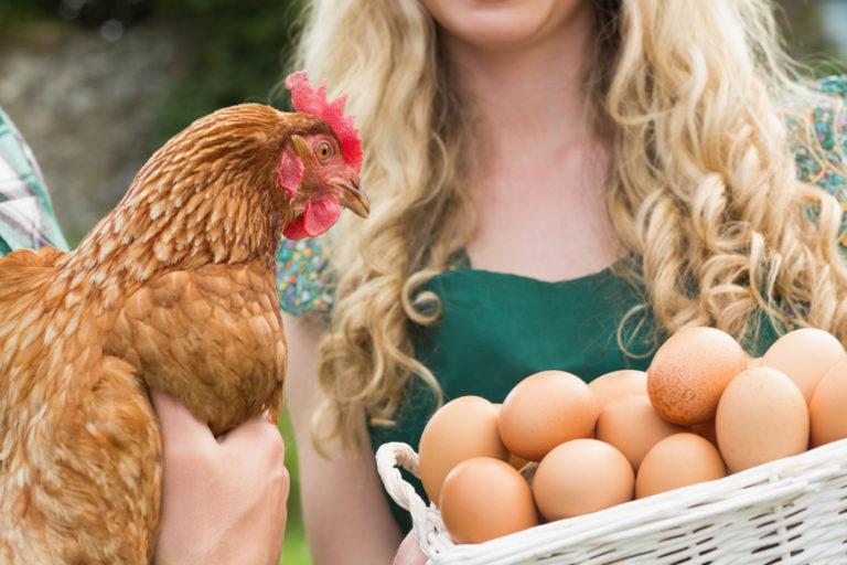 L'Union paysanne demande une hausse du hors quota