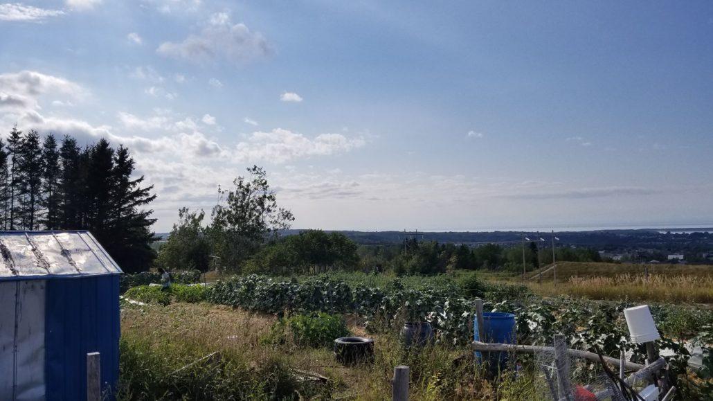 terre agricole au Québec