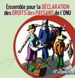 Les droits des paysans à l'ordre du jour de l'ONU