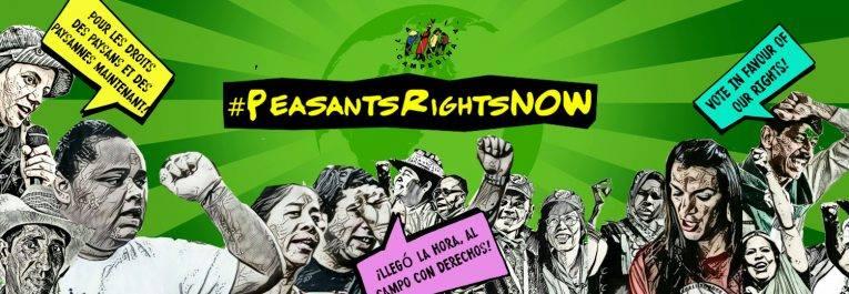 Déclaration des Nations Unis sur les droits des paysanNEs